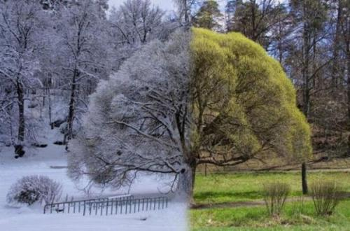 Image by myskincarecritic.com